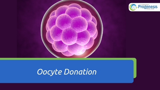 Oocyte Donation